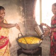 NGO's Role : • Implementation of Mid – Day Meal programme according to the programme guidelines. • Identification of Cooks who can be entrusted with the responsibility of cooking and...